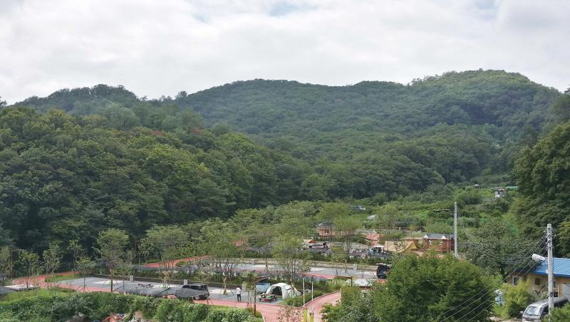 가족캠핑숲