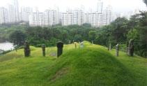 도기념물/한산이씨 묘역 이미지