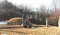 도문화재자료/풍산군 이종린 묘역 이미지