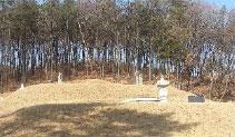 시향토문화재/덕수이씨 의정공파 묘역 이미지